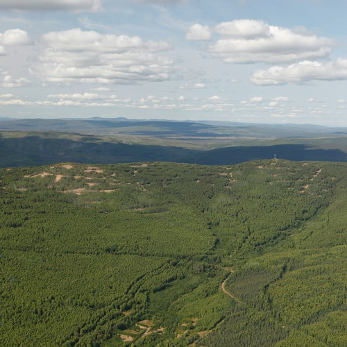 Looking north to Money Knob - the core of the Livengood Gold Project